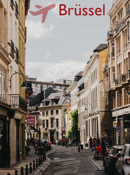 This year's European elections have brought Brussels back into the spotlight